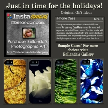 Holiday Publicity iPhone Cases