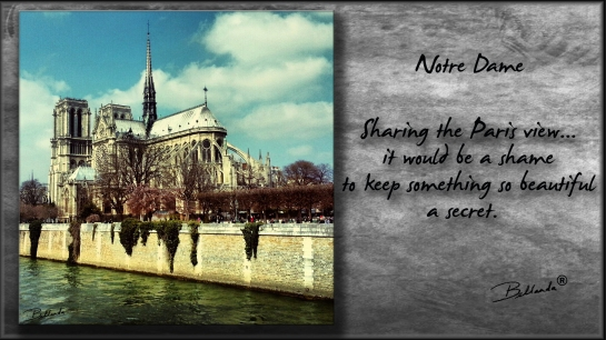 Notre Dame - Paris, FrancePhotography/Graphicsby Bellanda  ®