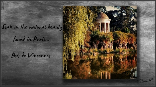 Bois de Vincennes Paris, France All rights reserved ~ BELLANDA ®