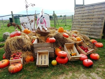 La Cueillette Plessis in Lumigny takes Halloween seriously! Photos: Bellanda ®