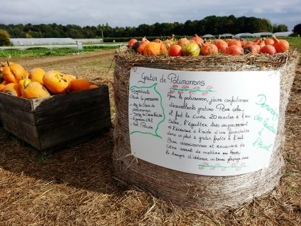 La Cueillette Plessis in Lumigny even gives out Pumpkin Recipes! Photos: Bellanda ®