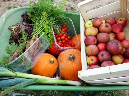 Farm Fruits and Veggies Bellanda ®