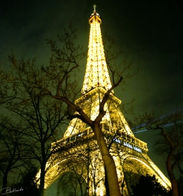 Last Days of 2013 in Paris… Thank You For Making This An AwesomeYear!
