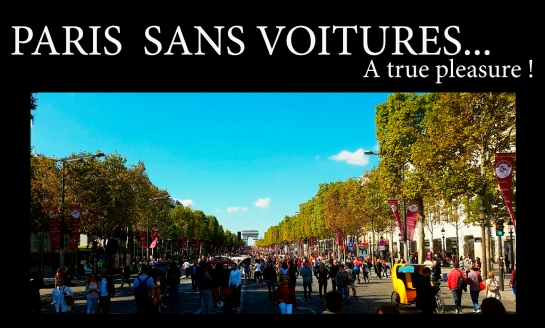 Paris Sans Voitures 2015