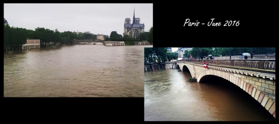 Feature Photo Paris Flood 3