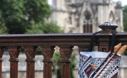 Notre Dame… you mesmerizeme!